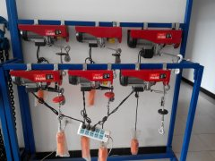 Mini electric hoist for sale